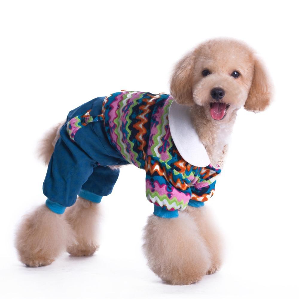 animal mignon petit chien - photo #17