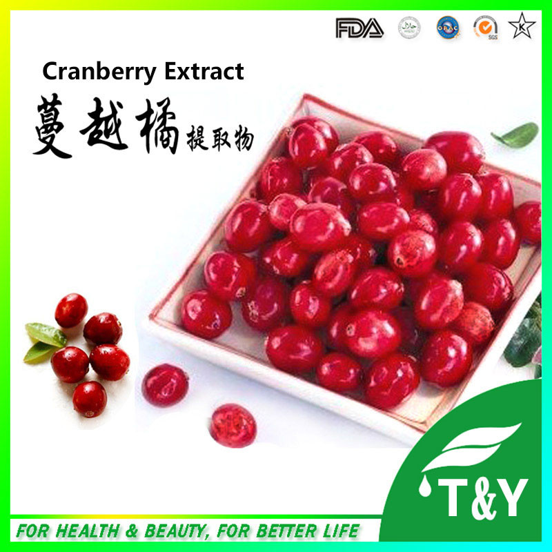 100% Natural proanthocyanidins Cranberry Extract Powder 700g