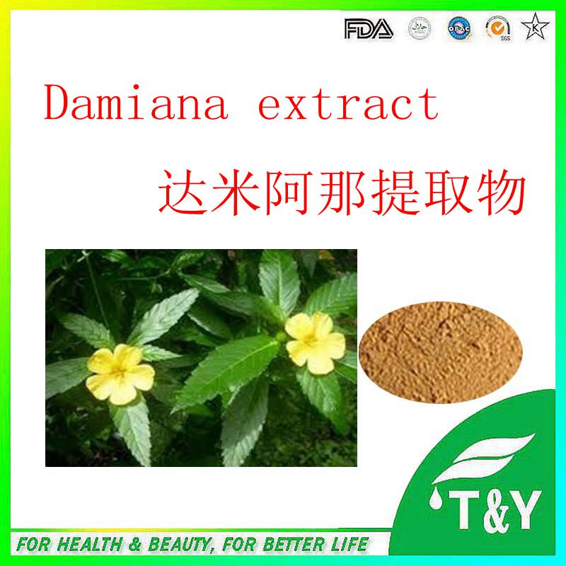 Pure Natural Damiana Leaf Extract Powder 1000g/lot