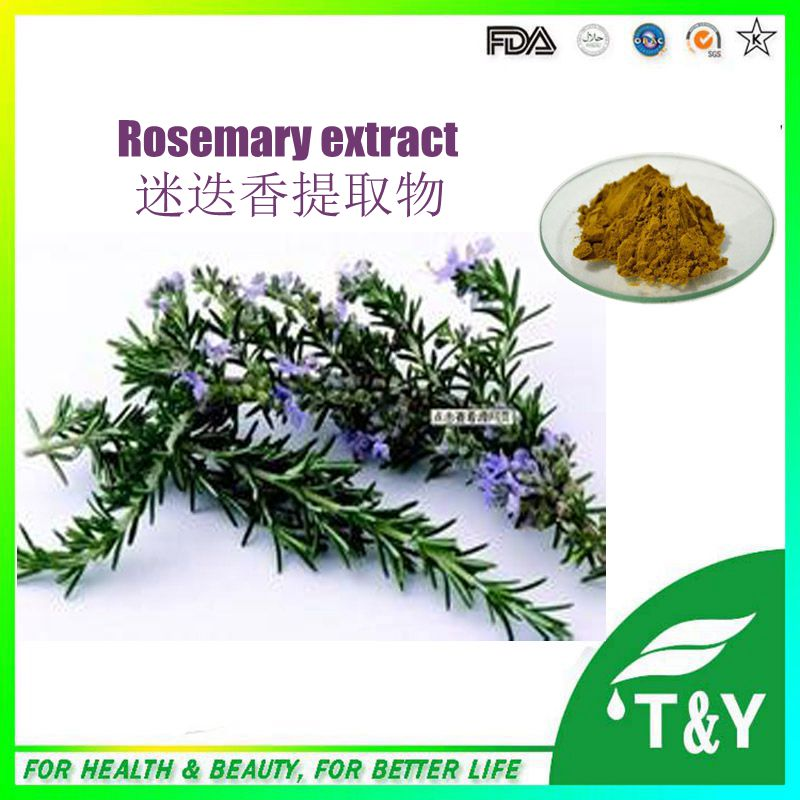 Welcome Natural supplement dried rosemary leaves extract 400g/lot<br><br>Aliexpress