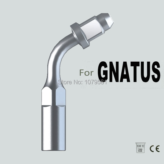 EG1, GNATUS,ENDODONTIC CANAL CLEANING, ENDODONTICS FILE, ORAL HYGIENE, DENTAL EQUIPMENT, DENTAL INSTRUMENT(China (Mainland))