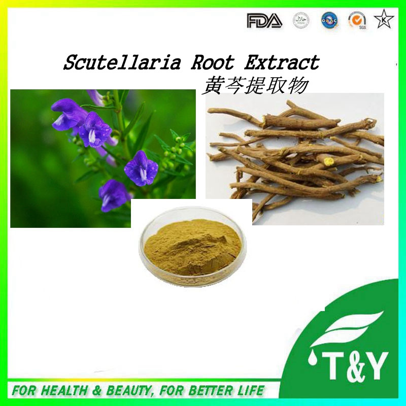 Factory Supply Scutellaria Baicalensis Extract , Baicalein with competitive price 400g/lot<br><br>Aliexpress