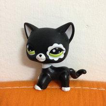 PET Shop Collection LPS Figure For Girl Children Black Short Hair Cat #2249 DW2249(China (Mainland))