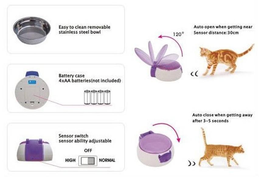 고양이 그릇 디스플레이 (2)