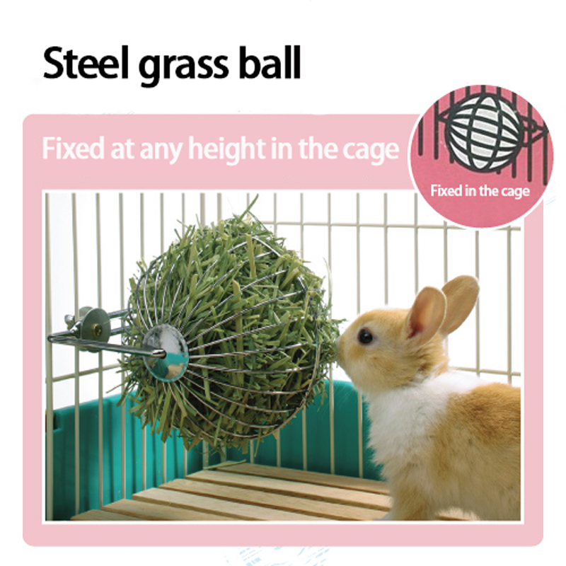 Popular chinchillas supplies buy cheap chinchillas for Discount guinea pig supplies