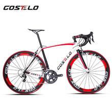 Costelo rio road bicycle carbon bike DIY complete bicycle completo bicicletta bicicleta completa different groups wheels bar(China (Mainland))