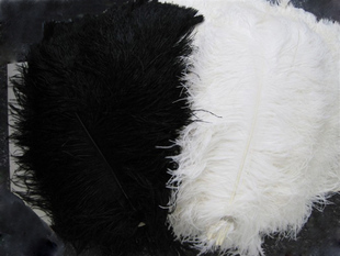 "12 pcs/lot Good 35-40cm 14-16"" fluffy White Black ostrich plumes feather Ostrich feathers Wedding centerpieces"