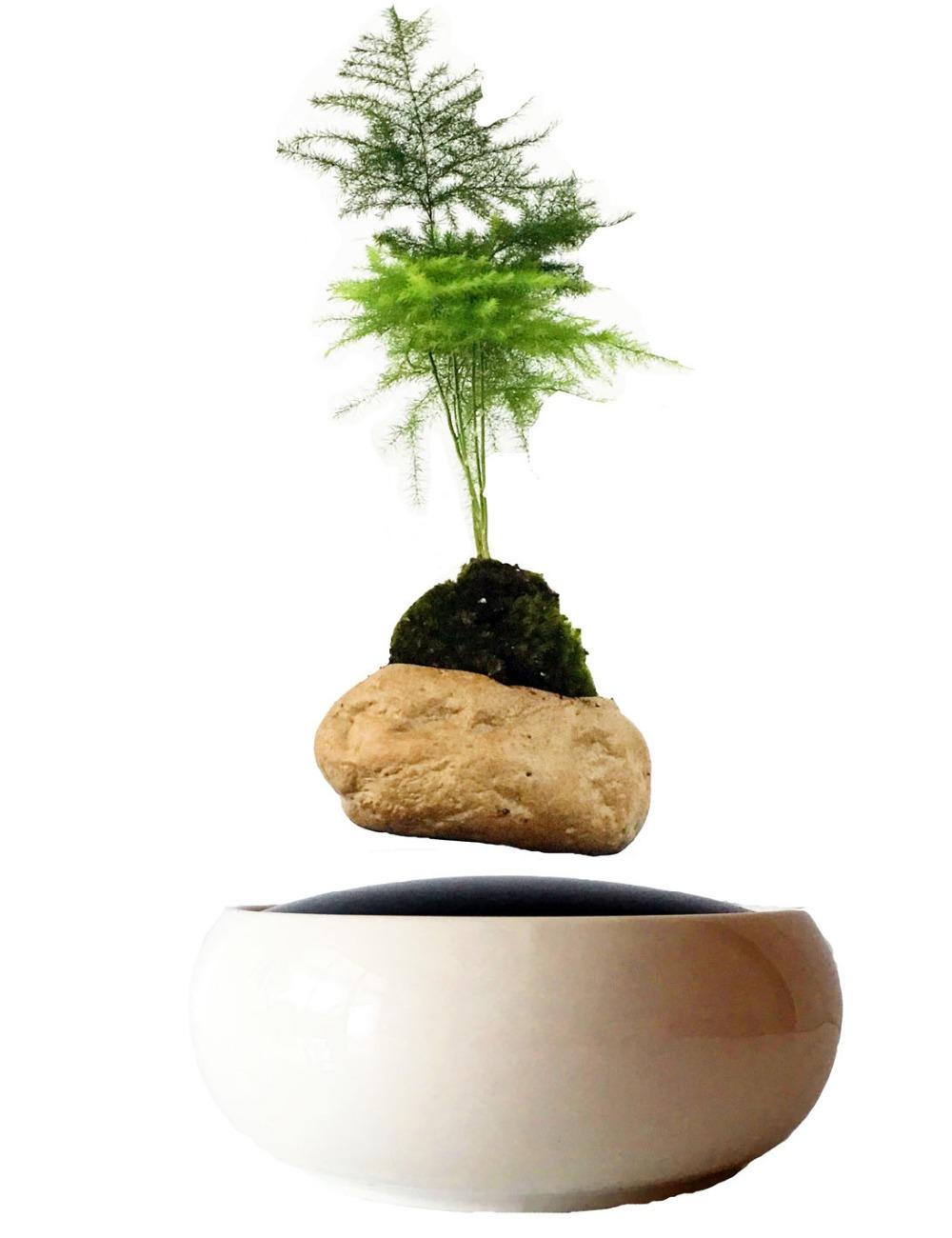 blanc poterie vase promotion achetez des blanc poterie vase promotionnels sur. Black Bedroom Furniture Sets. Home Design Ideas