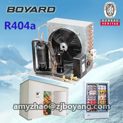 air cooled condensing unit indoor wall mounted for cold storage room(China (Mainland))