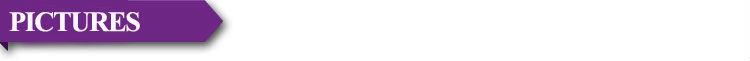 Бесплатная Доставка Из Нержавеющей Стали Общая Длина: 80 мм Максимальный Диаметр: 11.8 мм Минимальный Диаметр: 7.5 мм Кольцо: 27 мм Уретры Звучит Секс Продукты