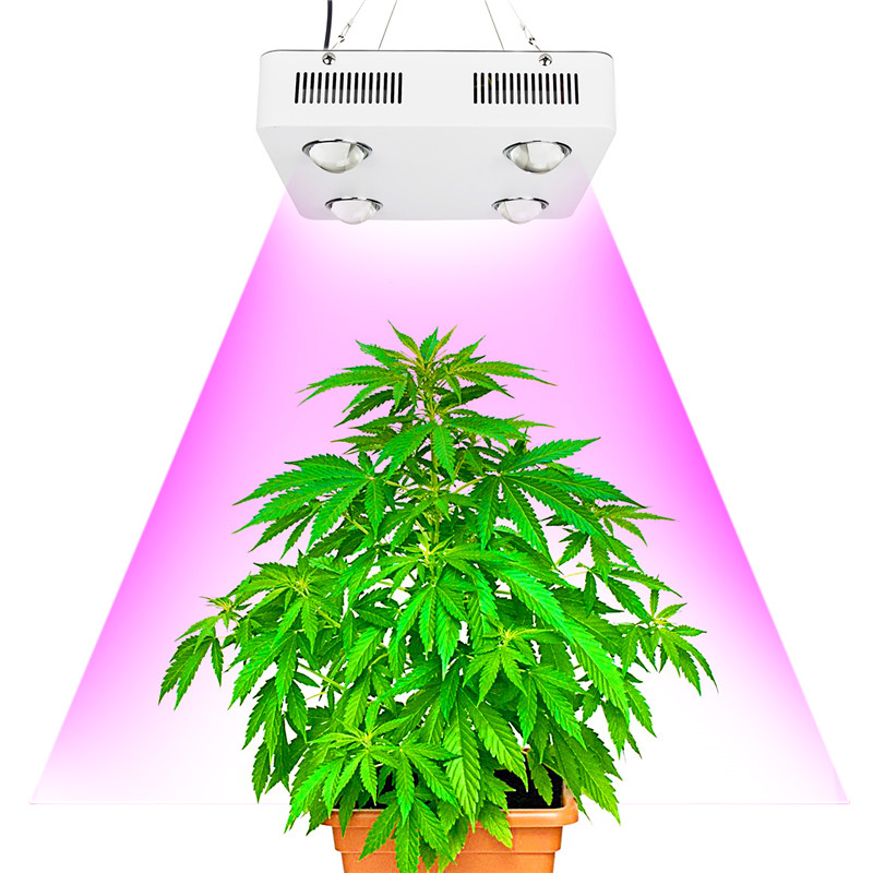 CF Grow 600W COB Full Spectrum LED Grow Light Replace UFO Apollo Growing Lamp for Hydroponic Greenhouse Plant Growth Lighting(China (Mainland))